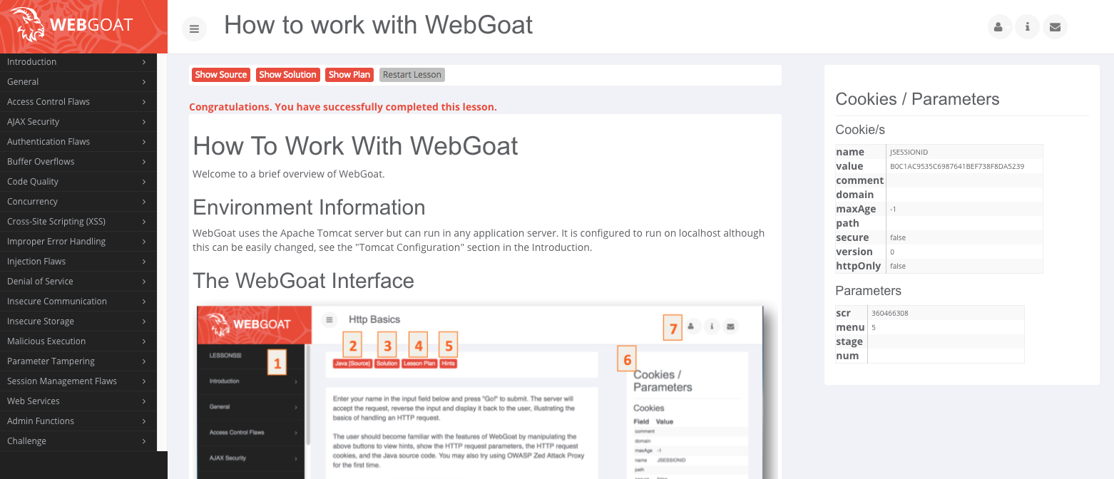 Learning Web Security Basics with WebGoat - zupzup